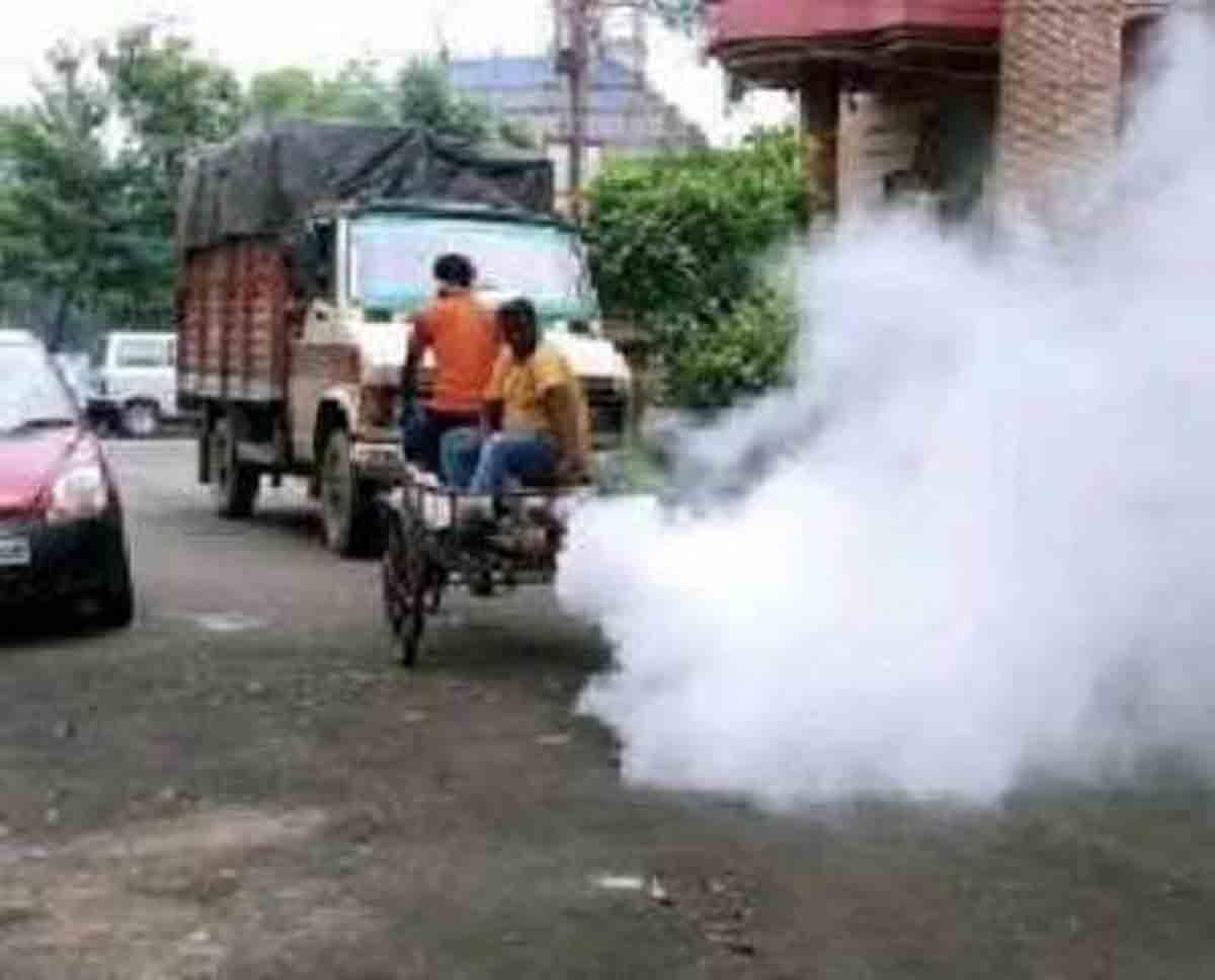 Bidhannagar and Dengue