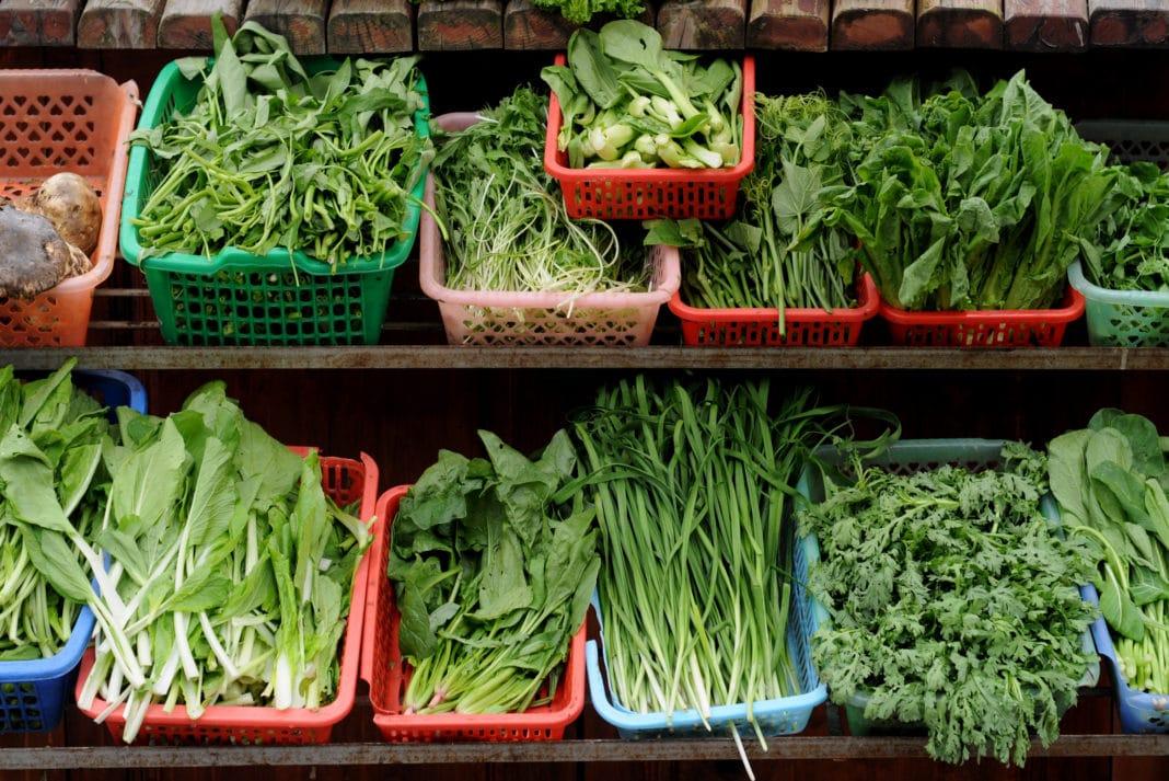 vegitable and diet