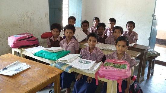 Primary School-1